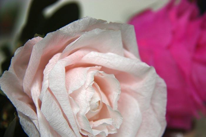 gwenadeco---fleurs-en-papier-3
